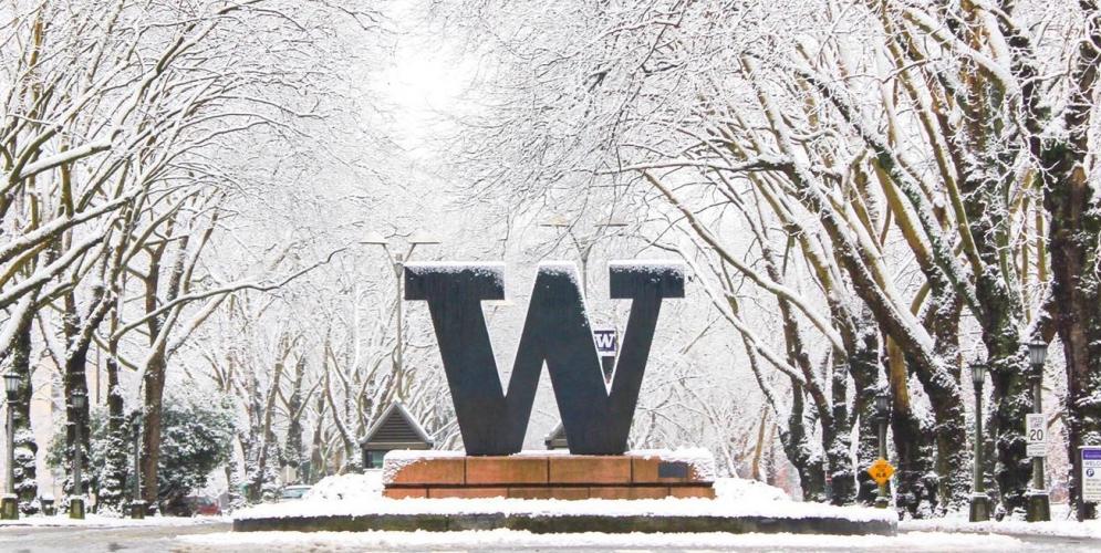 The Big W in Winter