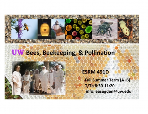 Beekeeping with Evan Sugden