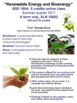 BSE 190A: Renewable Energy and Bioenergy - Flyer