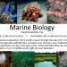 FISH/OCEAN/BIOL 250 Marine Biology